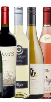 Imported wines mixed 6 pack